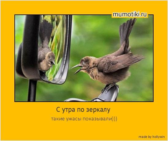 С утра по зеркалу такие ужасы показывали))) #мотиватор