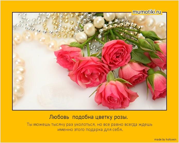 Любовь подобна цветку розы. Ты можешь тысячу раз уколоться, но все равно всегда ждешь именно этого подарка для себя. #мотиватор