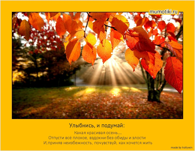 Улыбнись, и подумай: Какая красивая осень... Отпусти всё плохое, вздохни без обиды и злости И,приняв неизбежность, почувствуй, как хочется жить #мотиватор