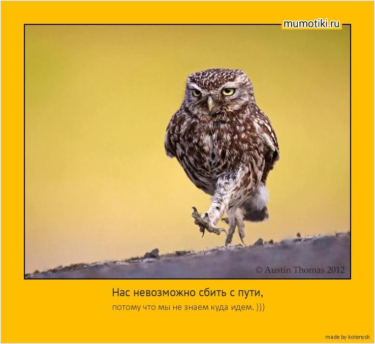 Нас невозможно сбить с пути, потому что мы не знаем куда идем. ))) #мотиватор
