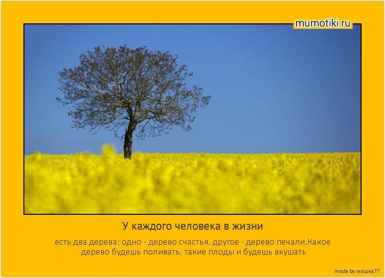 У каждого человека в жизни есть два дерева: одно - дерево счастья, другое - дерево печали.Какое дерево будешь поливать, такие плоды и будешь вкушать #мотиватор
