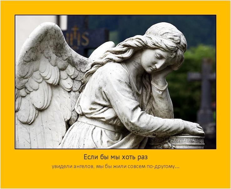 Если бы мы хоть раз увидели ангелов, мы бы жили совсем по-другому... #мотиватор