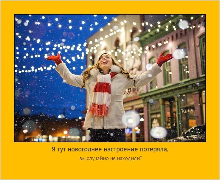 Я тут новогоднее настроение потеряла, вы случайно не находили? #мотиватор