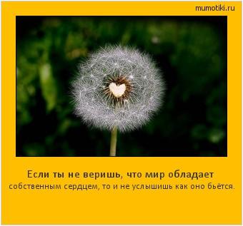 Если ты не веришь, что мир обладает собственным сердцем, то и не услышишь как оно бьётся. #мотиватор