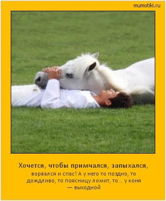 Хочется, чтобы примчался, запыхался, ворвался и спас! А у него то поздно, то дождливо, то поясницу ломит, то... у коня — выходной #мотиватор