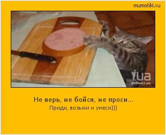 Не верь, не бойся, не проси... Приди, возьми и унеси))) #мотиватор