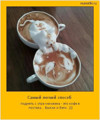 Самый легкий способ поднять с утра человека - это кофе в постель... Вылил и беги...))) #мотиватор