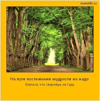 На пути постижения мудрости не надо бояться, что свернёшь не туда. #мотиватор