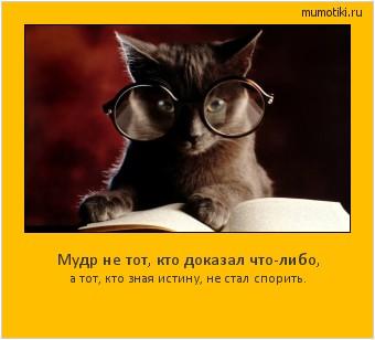 Мудр не тот, кто доказал что-либо, а тот, кто зная истину, не стал спорить. #мотиватор