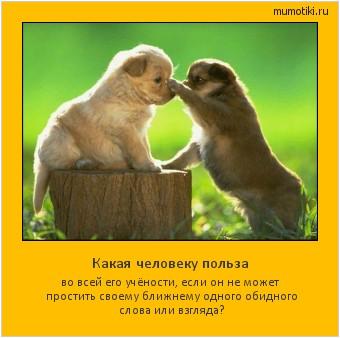 Какая человеку польза во всей его учёности, если он не может простить своему ближнему одного обидного слова или взгляда? #мотиватор