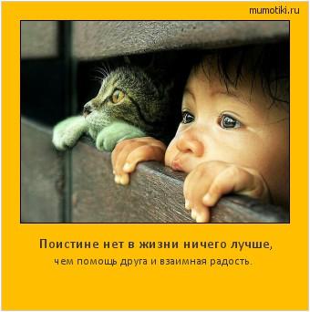 Поистине нет в жизни ничего лучше, чем помощь друга и взаимная радость. #мотиватор
