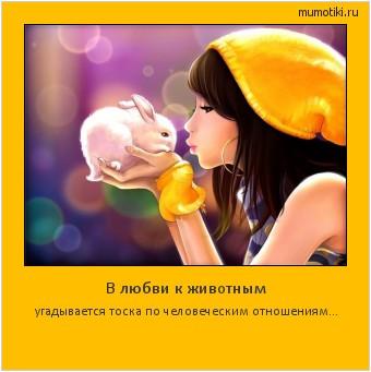 В любви к животным угадывается тоска по человеческим отношениям… #мотиватор