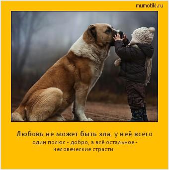 Любовь не может быть зла, у неё всего один полюс - добро, а всё остальное - человеческие страсти. #мотиватор