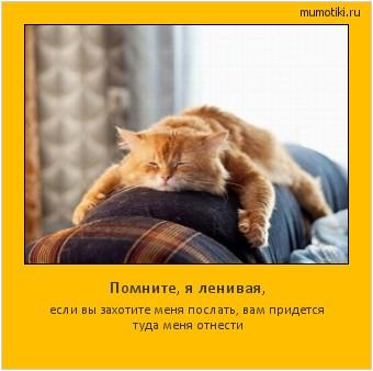Помните, я ленивая, если вы захотите меня послать, вам придется туда меня отнести #мотиватор