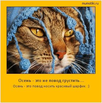 Осень - это не повод грустить.... Осень - это повод носить красивый шарфик. :) #мотиватор
