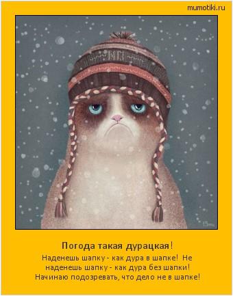 Погода такая дурацкая! Наденешь шапку - как дура в шапке! Не наденешь шапку - как дура без шапки! Начинаю подозревать, что дело не в шапке! #мотиватор