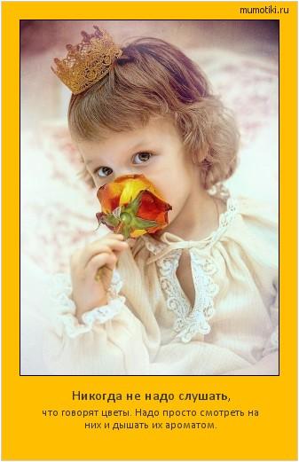 Никогда не надо слушать, что говорят цветы. Надо просто смотреть на них и дышать их ароматом. #мотиватор