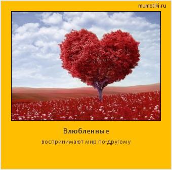 Влюбленные воспринимают мир по-другому #мотиватор