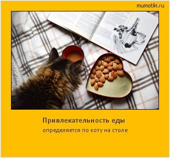 Привлекательность еды определяется по коту на столе #мотиватор