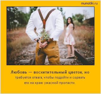 Любовь — восхитительный цветок, но требуется отвага, чтобы подойти и сорвать его на краю ужасной пропасти. #мотиватор