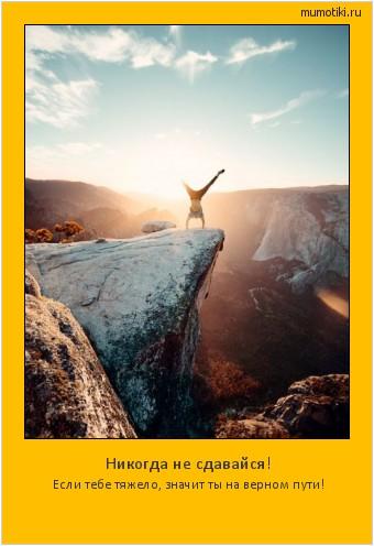 Никогда не сдавайся! Если тебе тяжело, значит ты на верном пути! #мотиватор