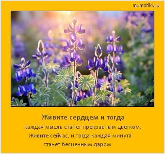 Живите сердцем и тогда каждая мысль станет прекрасным цветком. Живите сейчас, и тогда каждая минута станет бесценным даром. #мотиватор