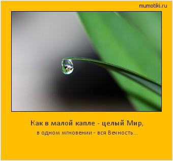 Как в малой капле - целый Мир, в одном мгновении - вся Вечность... #мотиватор