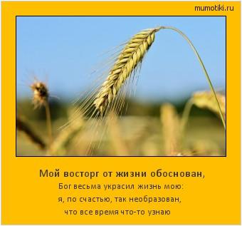 Мой восторг от жизни обоснован, Бог весьма украсил жизнь мою: я, по счастью, так необразован, что все время что-то узнаю #мотиватор