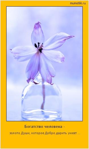 Богатство человека - золото Души, которое Добро дарить умеет ... #мотиватор