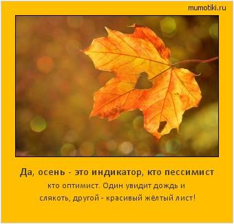 Да, осень - это индикатор, кто пессимист кто оптимист. Один увидит дождь и слякоть, другой - красивый жёлтый лист! #мотиватор